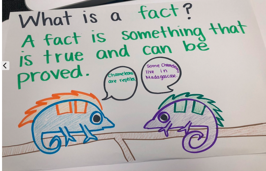 What is a fact?